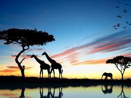 Особенности материка Африки