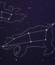 Созвездие большой медведицы доклад для детей 4230