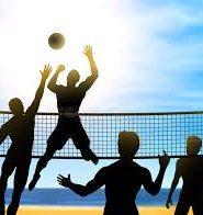 Реферат на тему волейбола 5325