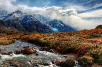 северная америка особенности природы