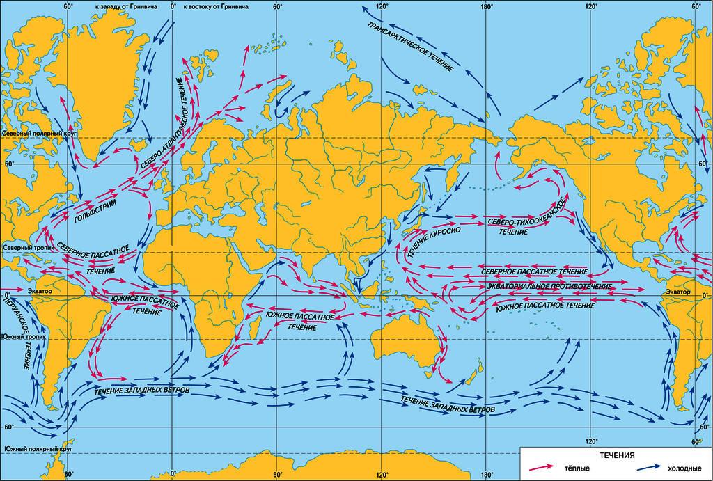 Теплые течения Северного Ледовитого океана