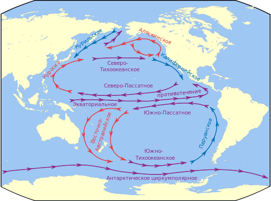 Теплое течение Тихого океана