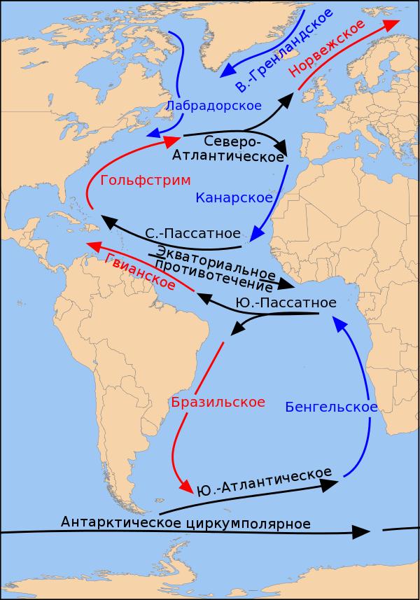Теплые течения Атлантического океана