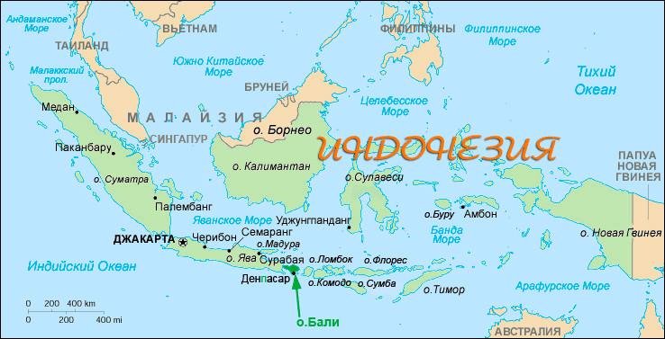 План описания страны Индонезия