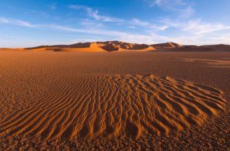 Краткая характеристика зоны пустынь