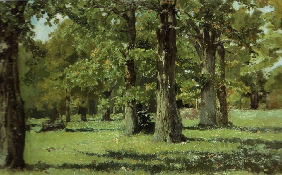 почвы широколиственных лесов