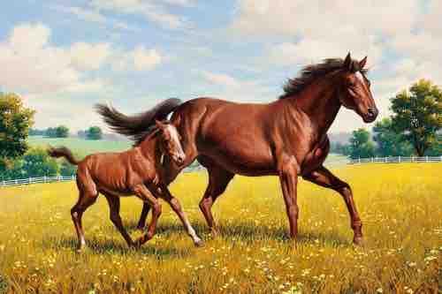 60 описание лошади для детей