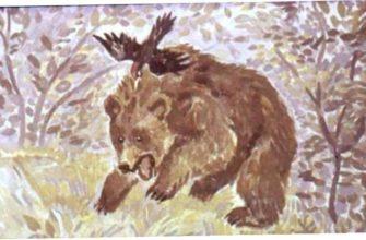 Дремучий медведь план рассказа