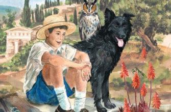 моя семья и другие звери читательский дневник