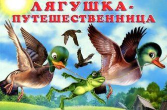 лягушка путешественница план сказки