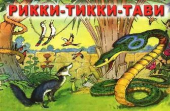Рикки-Тикки-Тави читательский дневник