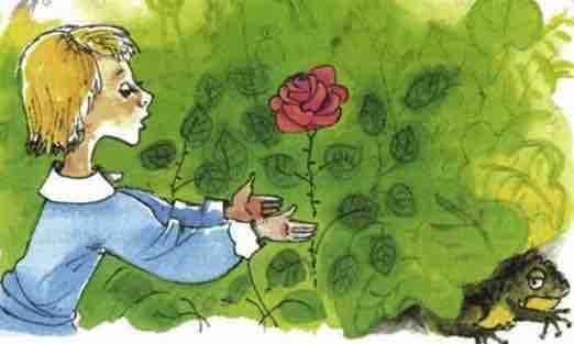жаба и роза читательский дневник
